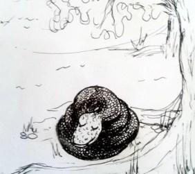 kancil melihat ada ular besar yang sedang tidur