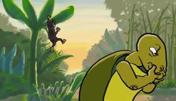 Kisah Cerita Anak Kura-kura dan Monyet Pembohong