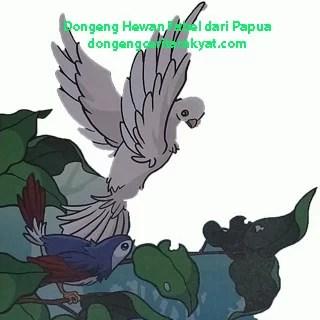 Dongeng Hewan Fabel dari Papua