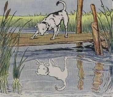 Kumpulan Dongeng Hewan Fabel Anjing kecil