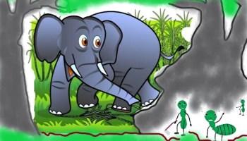 Cerita anak dongeng Fabel Semut dan Gajah