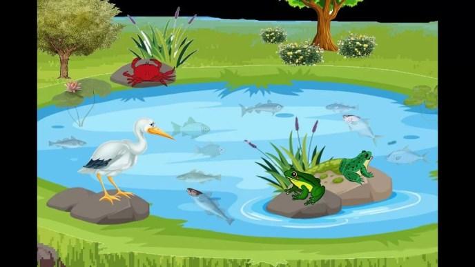Cerpen Anak Terbaru Fabel Singkat Bangau dan Kepiting