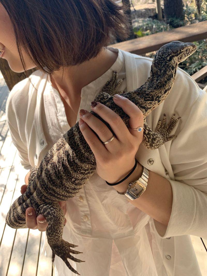爬虫類を抱っこ