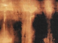 """Tiger Skin"" - DETAIL 3, oil on dyed canvas - 38 x 62 cm, 2006"