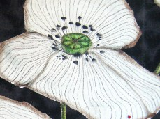 """""""White Poppies"""" - DETAIL 1, oil on dyed canvas - 47 x 66 cm, 2009"""