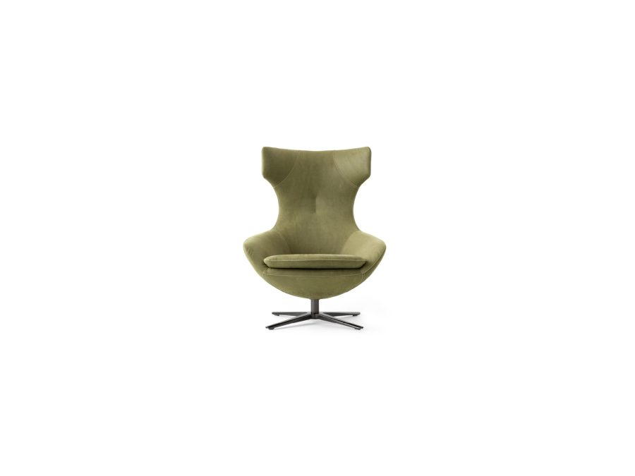 Leolux fauteuil Caruzzo pa