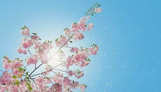 スピリチュアル的にみる春分の日は宇宙の新年?2021年のテーマを考える