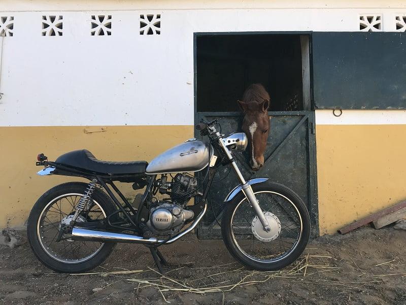 Torrefacta. Yamaha SR125 cafe racer