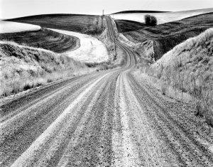 2000162 Wheatfield, Ping Gulch Road, WA 2000