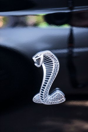 20151327DC Viper 2015