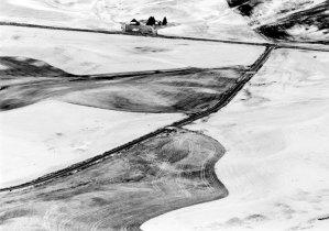 58114 Wheatfield, Steptoe Butte, WA 1998