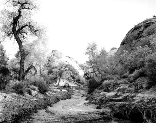 84028 Forbidding Canyon, AZ 1984