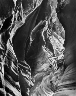 88020 Log & Wall, Buckskin Gulch, UT 1988