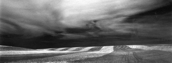 91052 Wheatfield, Eastern WA 1991