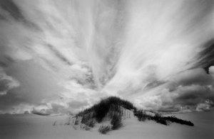96175 Oregon Dunes, OR 1996