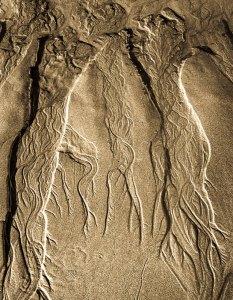 73253DF-2 Sand Flow, Oregon 2013