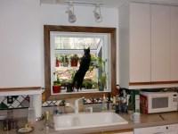 Bay Window In Kitchen   Home Gym Ideas