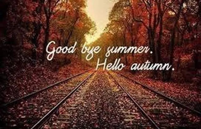 Fall Traditions!