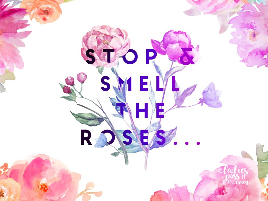 STOP AND SMELL THE ROSES, THE WORLD WON'T STOP IF YOU DO