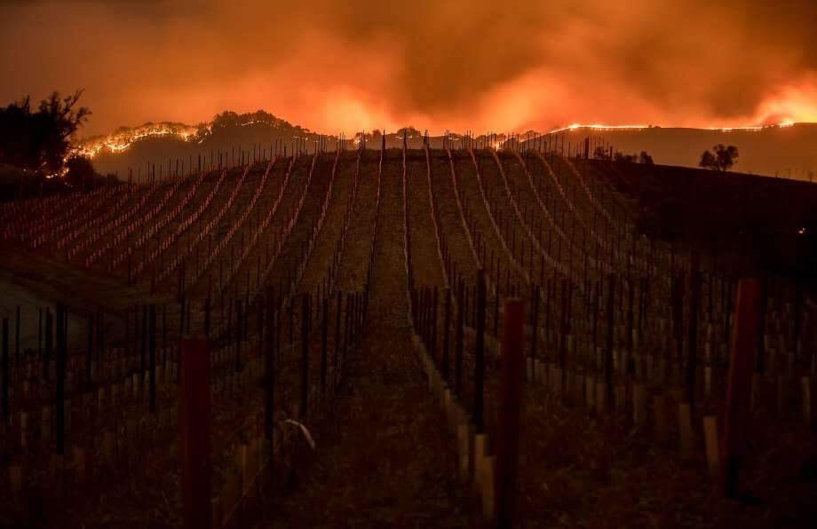 Lessons learned in the face of a wildfire/ forest fires