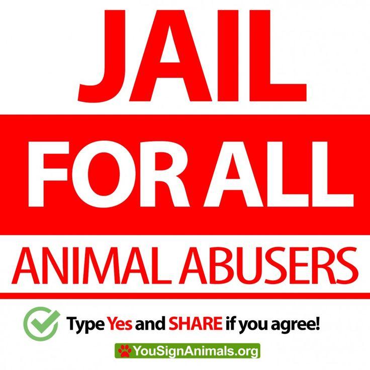 Stop animal abuse/ animal abusers to go to jail