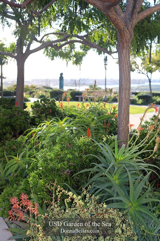 University of San Diego Garden of the Sea Photo