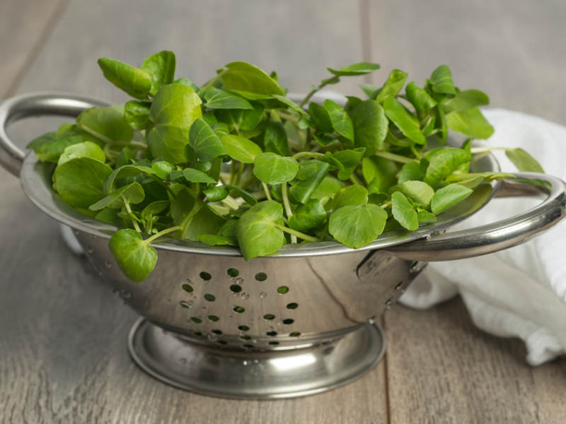 10 Greens To Eat Instead of Kale