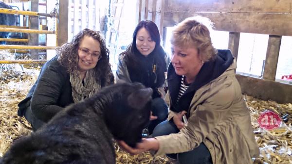 A Visit to SkyView Farms #FarmLife #NorthIowa