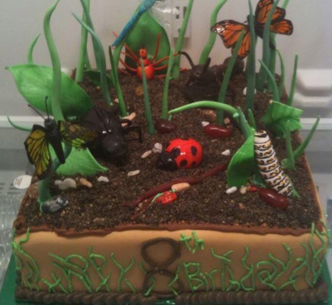 Diy Beat Bugs Birthday Party Donnahup Com