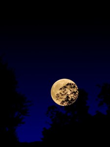 Harvest Moon in night sky (iStock photo)