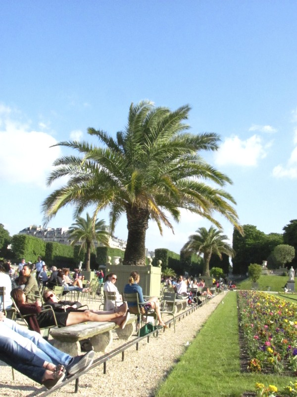 The Luxembourg Gardens are full of neighborhood people. The palm trees are only out during the warm months.
