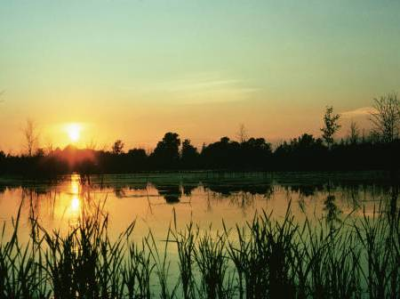 Sunset at Iroquois National Wildlife Refuge. USFWS/public domain.