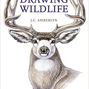 cover_drawing wildlife