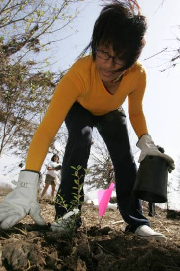 Young naturalist plants a tree.