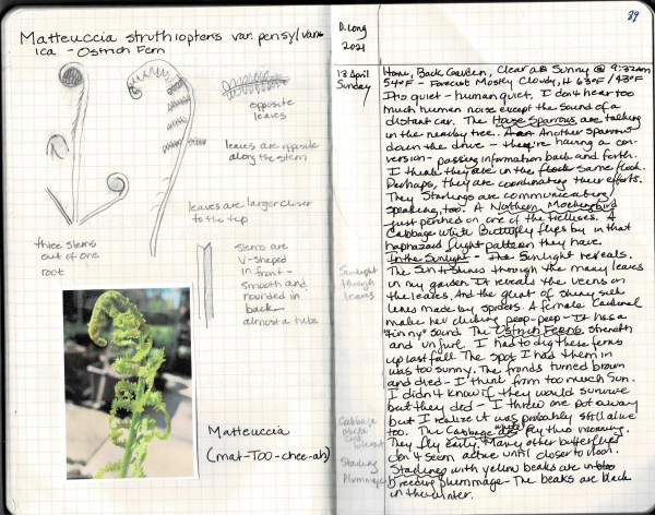 Nature journal page 18 april 2021