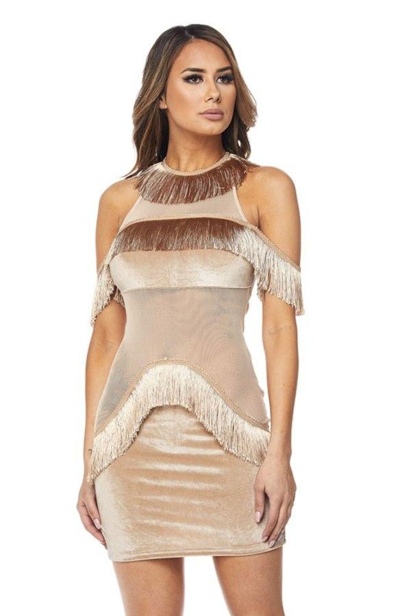 Promp and Prissy Mesh Trim Fringe Dress 04