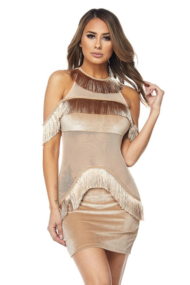 Promp and Prissy Mesh Trim Fringe Dress 04
