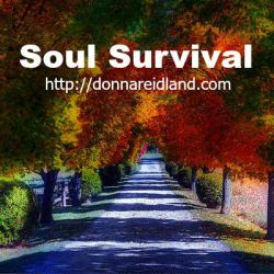 soul survival sq 1