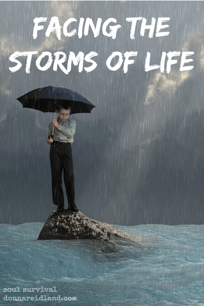 Facing the Storms of Life - Are you facing a storm in your life? Are wind and waves threatening to sink you boat? Are you worried about our nation, the economy or something else? Remember when you're facing the storms of life, He still rebukes the wind and waves.