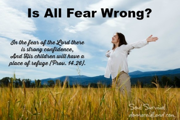 In the fear of the Lord there is strong confidence, And His children will have a place of refuge (Prov. 14.26).