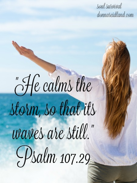 """He calms the storm, so that its waves are still."""" Psalm 109.29"""