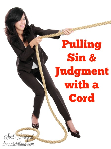 "Pulling Sin & Judgment with a Cord - Could Isaiah's words paint a picture of our nation? He describes people who work at sin. They don't fall into it; they pull it to themselves like a team of horses pulls a load. They do it, in spite of, the conviction of their own consciences and God's faithfulness to warn and correct them. In so doing, they pull God's judgments onto their own heads. He describes their sin by saying they ""call evil good, and good evil."" Yet, in spite of God's strong warnings against it, we have decided to call homosexuality another lifestyle option and abortion just a choice. We justify the wicked for a bribe and call it politics and call anyone who speaks up for the truth intolerant."