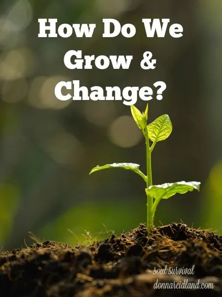 """How Do We Grow & Change? - A couple of weeks ago I wrote about prayer and Bible study and how they are""""The 2 Essential Means of Christian Growth.""""This week I want to talk more about how those two means work themselves out on a practical level."""