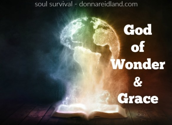 "God of Wonder & Grace - God is a God of both wonder and grace. His wonder is demonstrated everywhere throughout the Word and as we view creation, including the way He spoke it into existence ""ex nihilo,"" from nothing. His grace, too, is seen throughout the Bible. including through those He chose to be in the lineage of our Savior. #creation #wonder #grace #God"