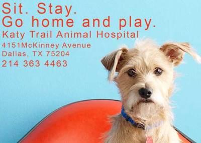 Katy Trail Animal Clinic Post Card