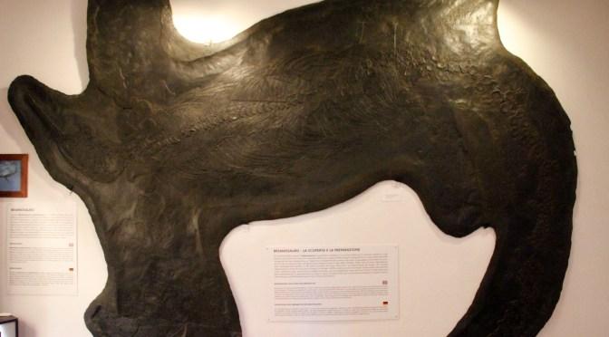 Il Museo di Gennaio: il Museo Civico dei fossili di Besano