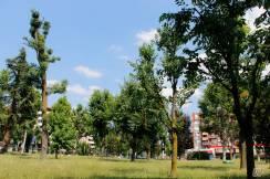 Il Parco Porporati.