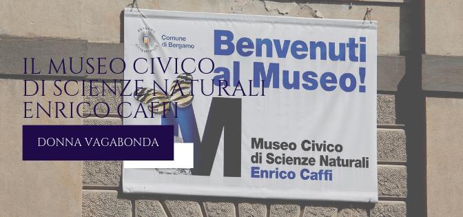 Il Museo di Marzo: il Museo civico di Scienze Naturali di Bergamo