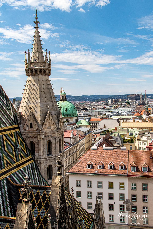 Dal tetto del Duomo di Santo Stefano - Vienna