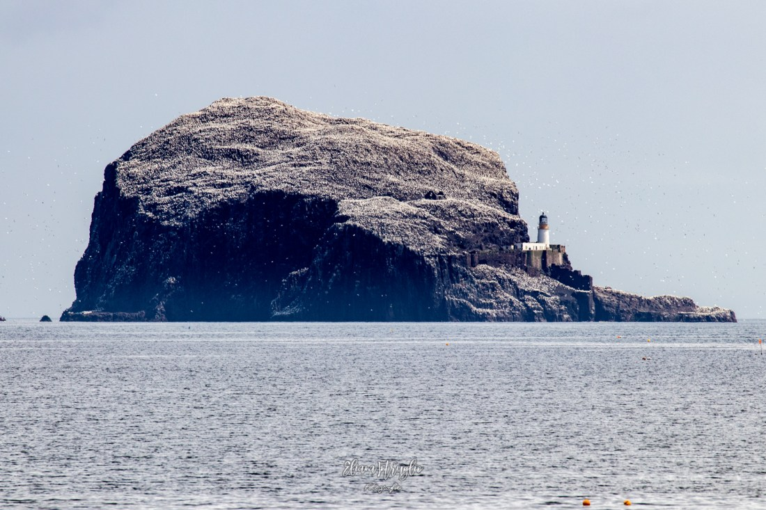 Rock_Island_1